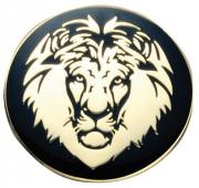 Hard Enamel Lapel Badge